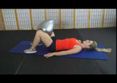 Adductors (Inner Thighs)