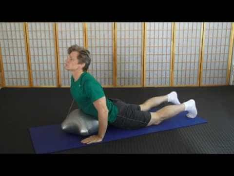 Assisted Yoga Stretches | Pigeon | Crocodile | Cobra | Hare